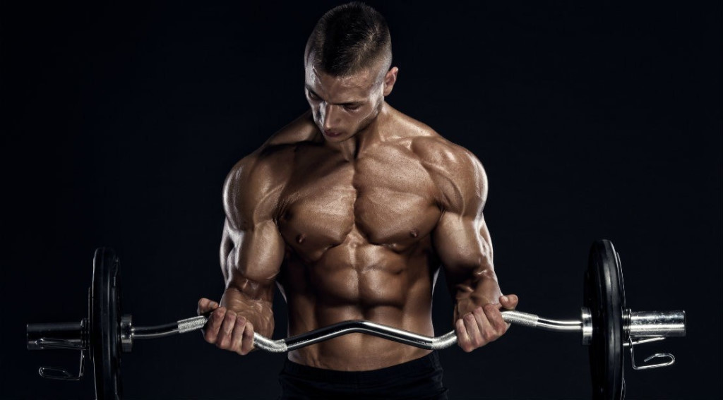 Nozioni di base di Testosterone Cipionato