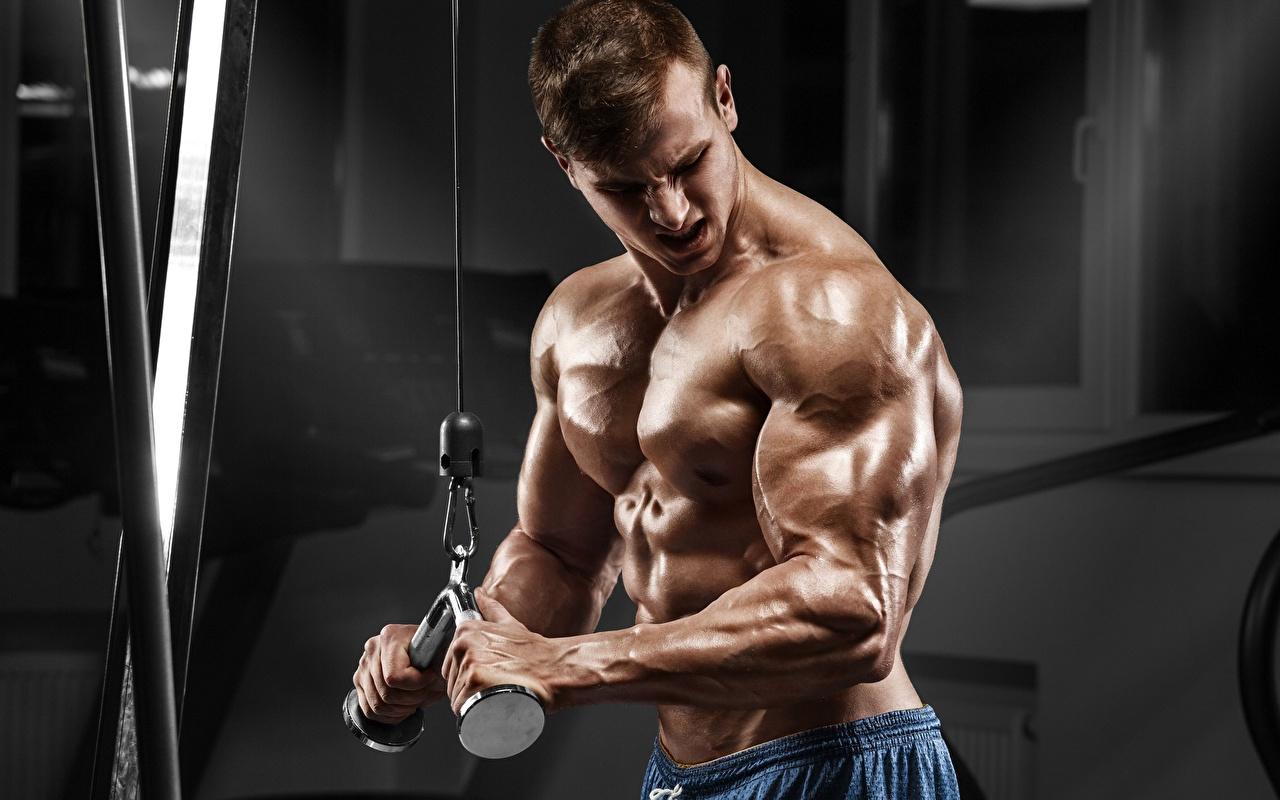 Testosterone Cipionato effetti collaterali